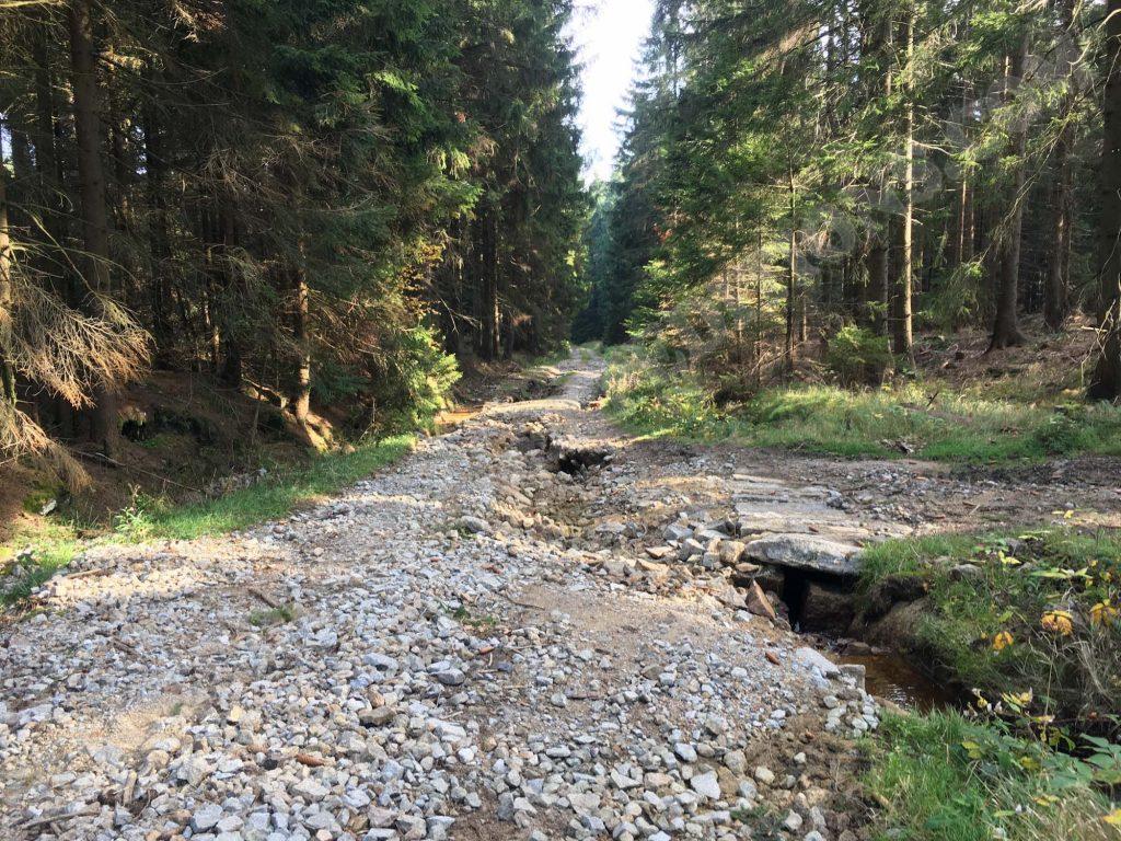 Oberharz MTB Tour