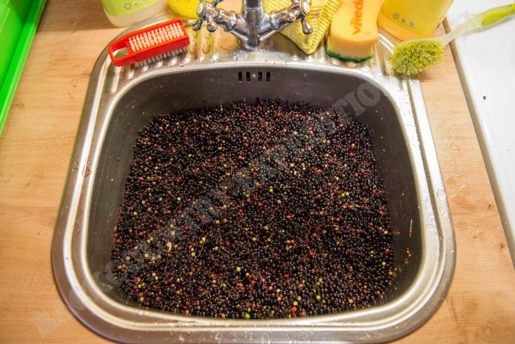 Holunderbeeren waschen