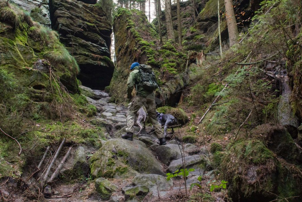 Clawgear Operator Combat Pant im Elbstandsteingebirge