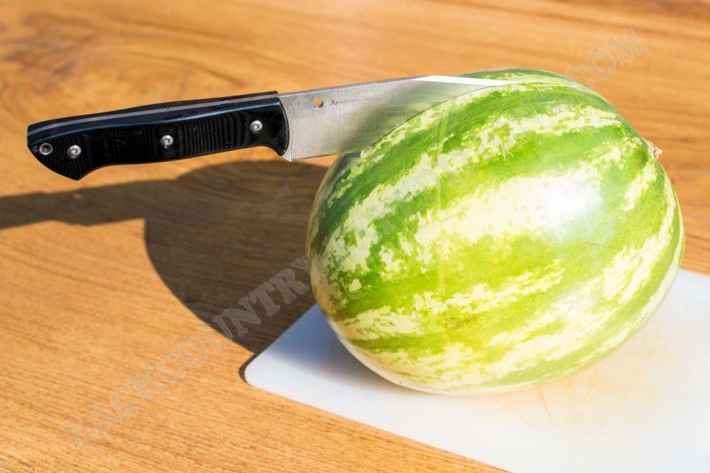 Spyderco Province Melone