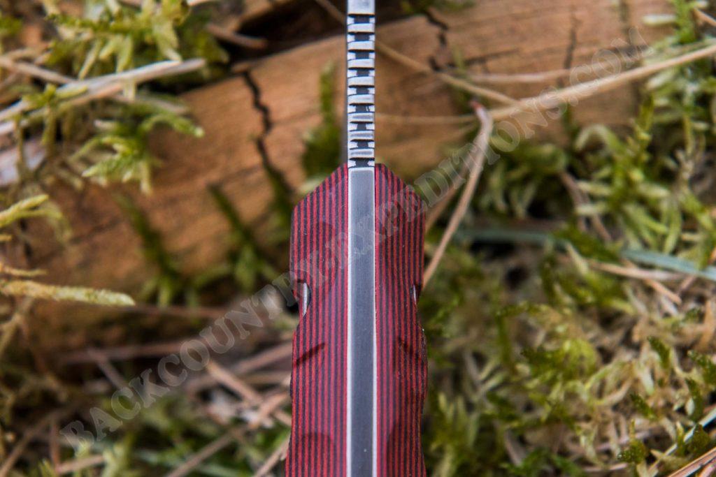 Dawson Serengeti