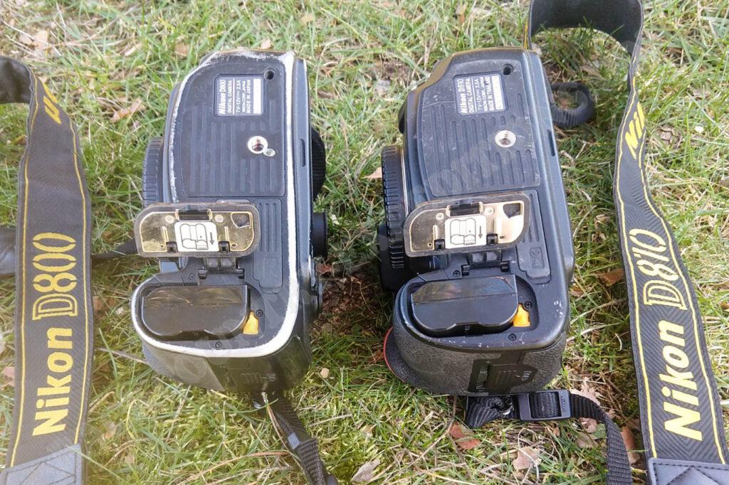 Nikon D800 vs. D810
